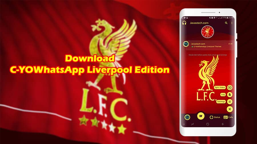 Download C-YOWhatsApp Liverpool