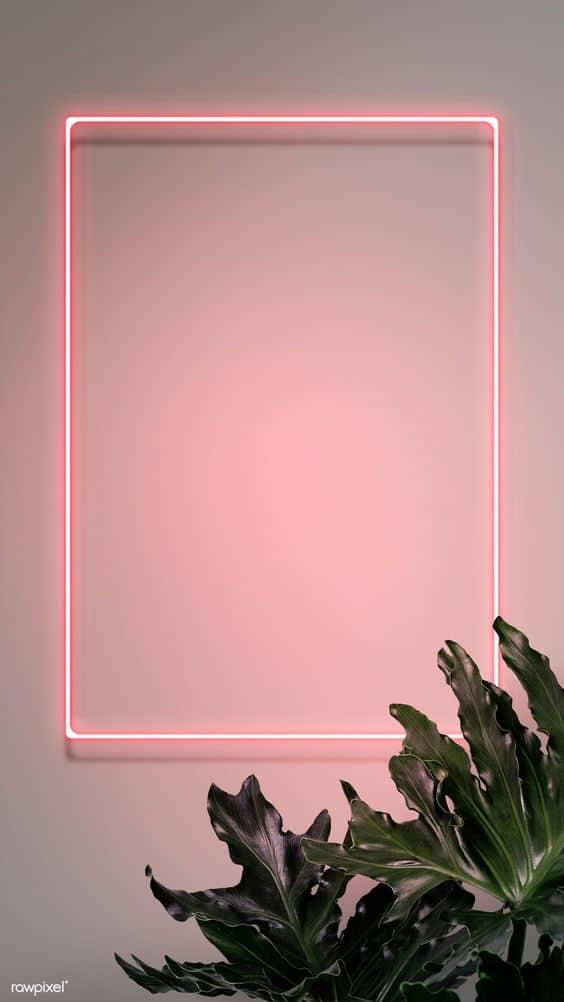 Neon Frame Wallpaper