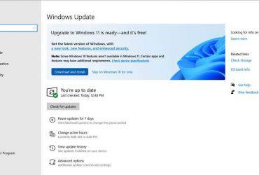 Notifikasi Upgrade ke Windows 11